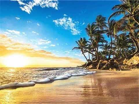 Картина раскраска по номерам 40x50 Рассет на берегу (арт. RA3557)