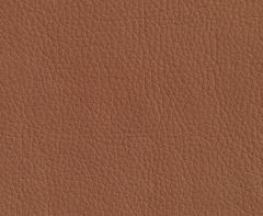 Искусственная кожа Oregon (Орегон) 07