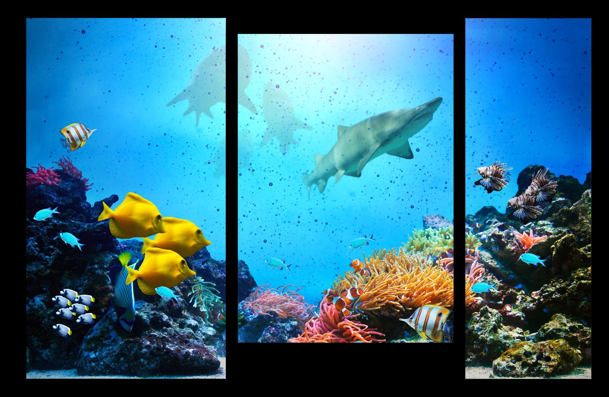"""Природа Модульная картина """"Подводный мир"""" М1097_M_загибы_90х60.png"""
