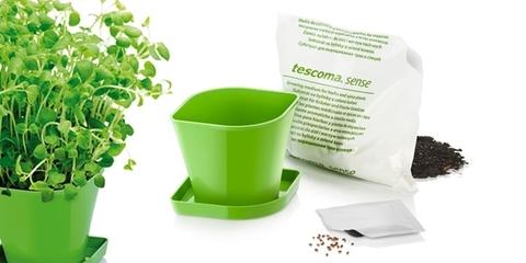 Набор для выращивания пряных растений Tescoma SENSE, орегано