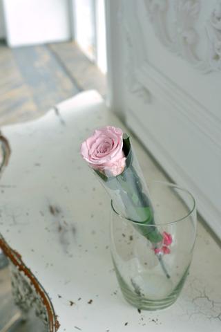 Роза на стебле Premium Оптом Высота*Бутон (37см*5-6см) Цвет нежно розовый