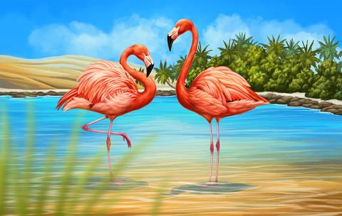 Картина раскраска по номерам 40x50 Встреча двух фламинго