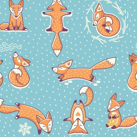Зимние лисики