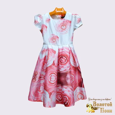 Платье нарядное девочке (4-8) 201217-PL4025