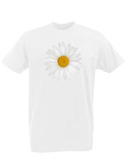 Футболка с принтом Цветы (Ромашки) белая 0001