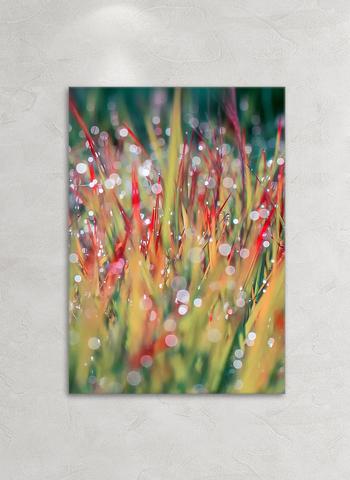 Картина на стекле Маковое поле 2, 28х40 см