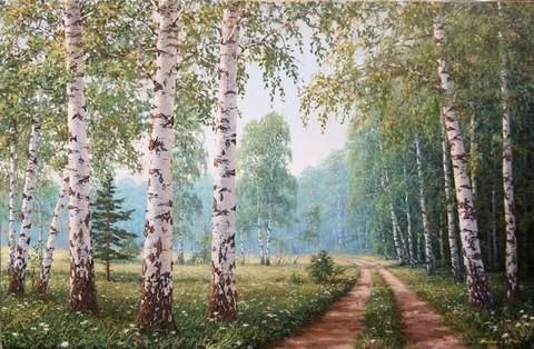 Картина раскраска по номерам 40x50 Дорога в березовом лесу
