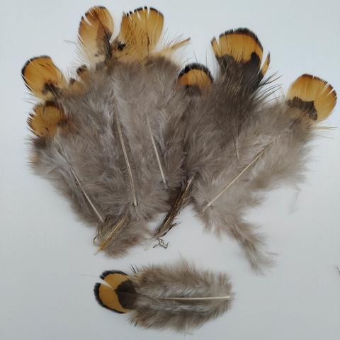Перья фазана  5-8 см., 10 шт. (вид 2)