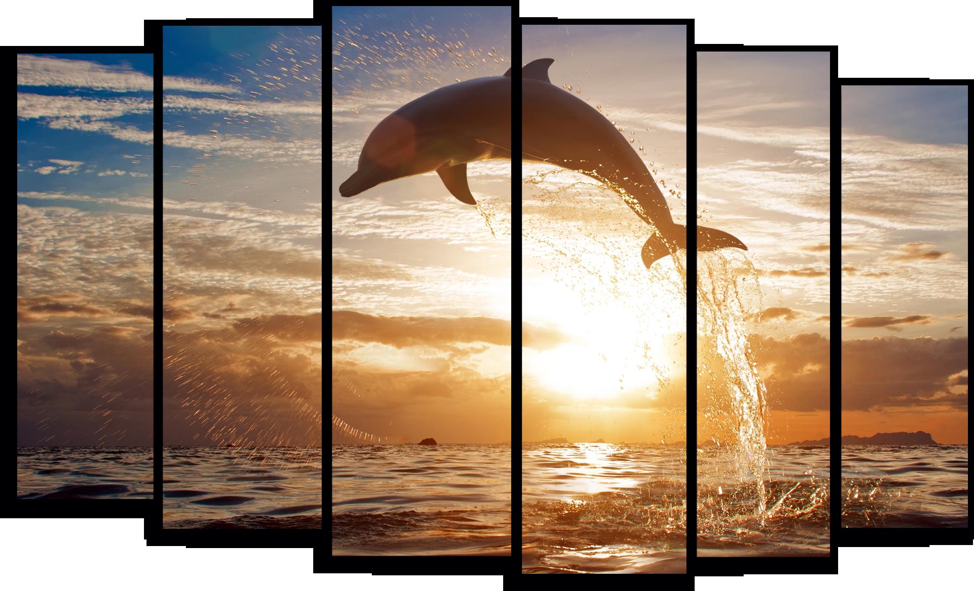"Природа Модульная картина ""Дельфин на закате"" М775.png"