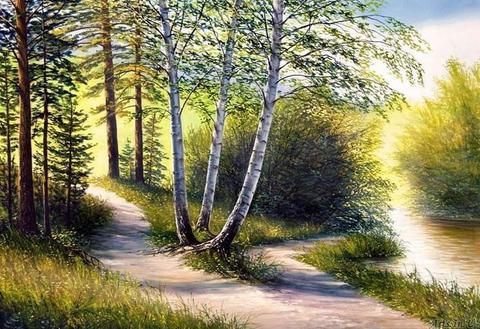 Картина раскраска по номерам 40x50 Тропинка в лесу