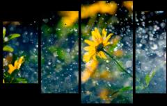 """Модульная картина """"Красивый Дождь"""""""