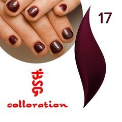BSG Colloration, №17 Бордовый