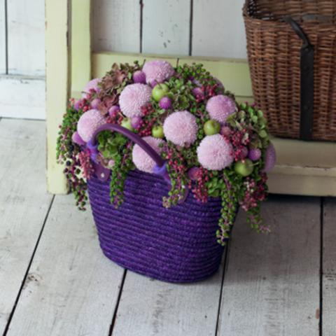 Хризантемы розовые Momoko от 9шт