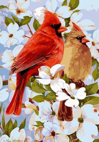 Картина раскраска по номерам 40x50 Птицы на ветке с белыми цветами