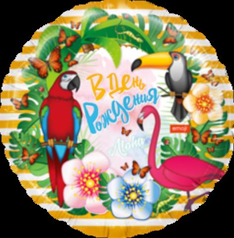 К Круг, В День Рождения, Emoji (тропические птицы).
