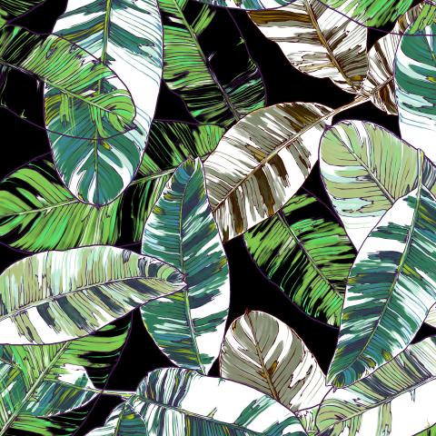 листья банана_06