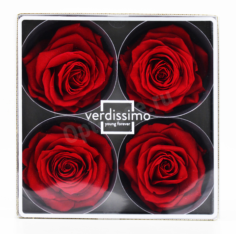 Стабилизированный Бутон Розы Verdissimo (Франция). Цвет Красный (Диаметр 7-8см)