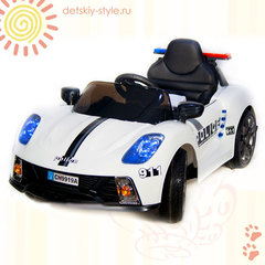 Porsche Police CH 9919