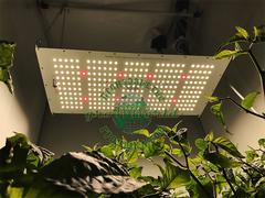 LED светильник Quantum Board 120w SUN 2 PPF 2.8