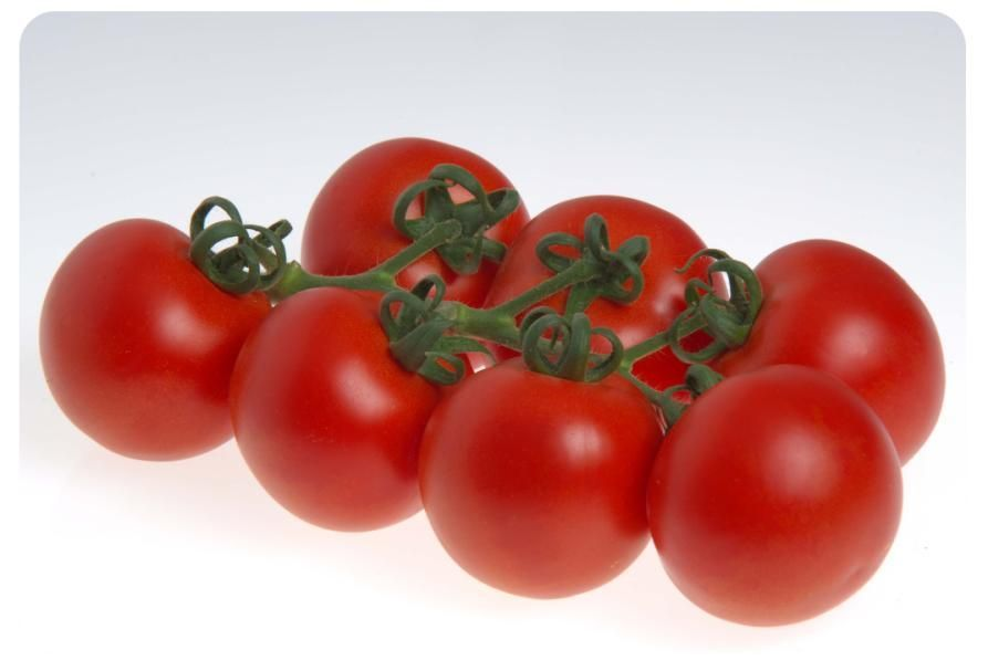 Томат Сиде F1 семена томата индетерминантного (Sakata / Саката) СИДЕ_F1_семена_овощей_оптом.jpg