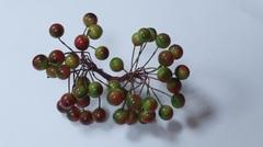 Ягодки для декора 1,2 см, пучок около 40 шт на проволоке.