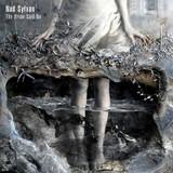 Nad Sylvan / The Bride Said No (CD)