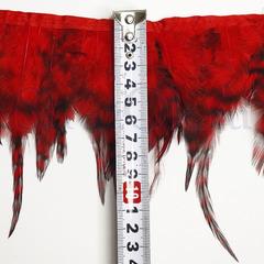 Купить оптом перья Пестрого Петуха на ленте Light Siam красные