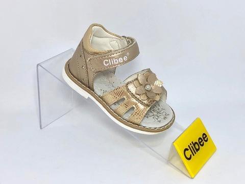 Clibee F270 Gold 20-25