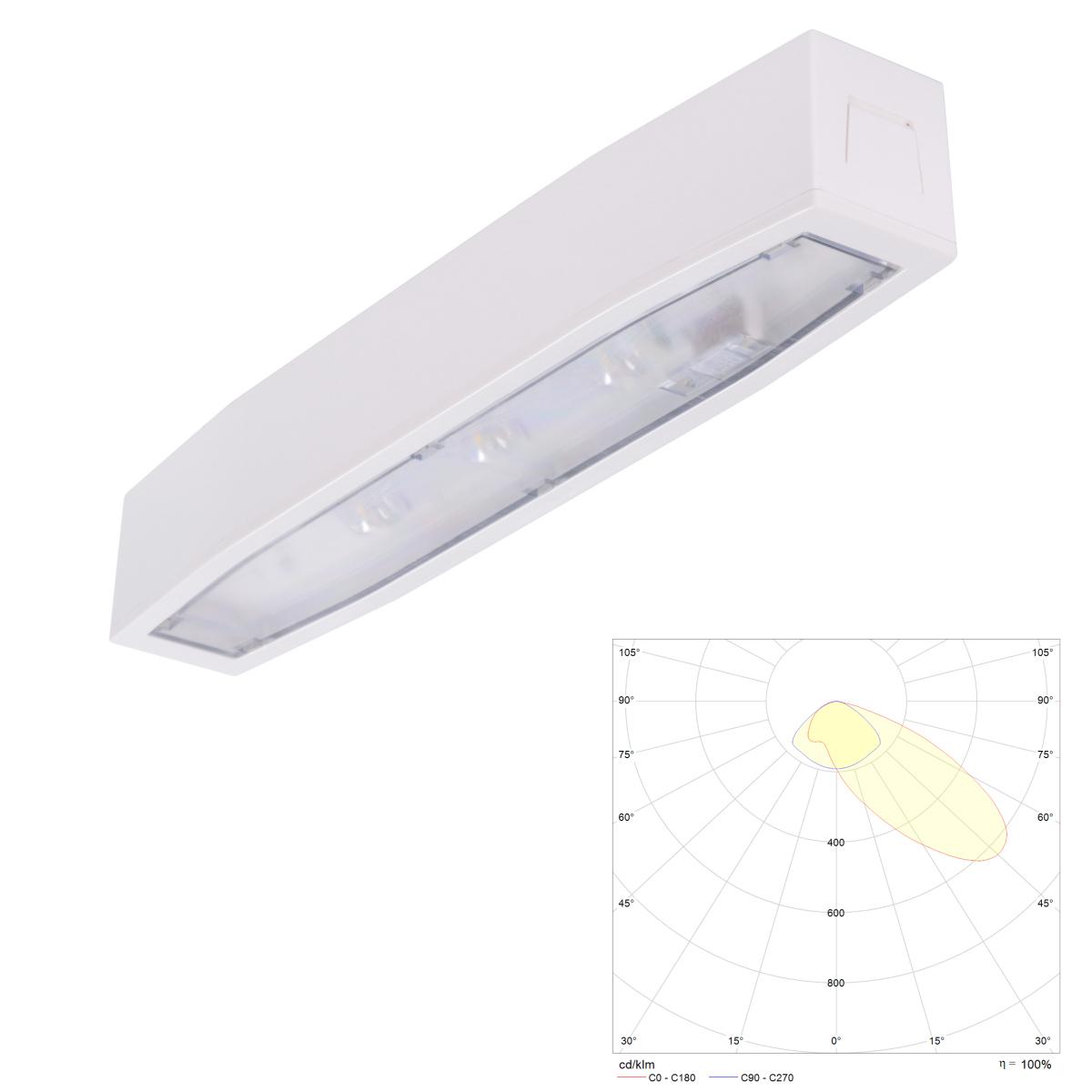 Накладной светильник аварийного освещения путей эвакуации с асимметричным светораспределением Suprema LED SСA NT IP54 Intelight