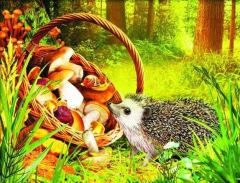 Алмазная Мозаика 40x50 Ёжик нюхает корзину с грибами (арт. HWA2223 )