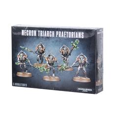 Necron Lychguard / Triarch Praetorians