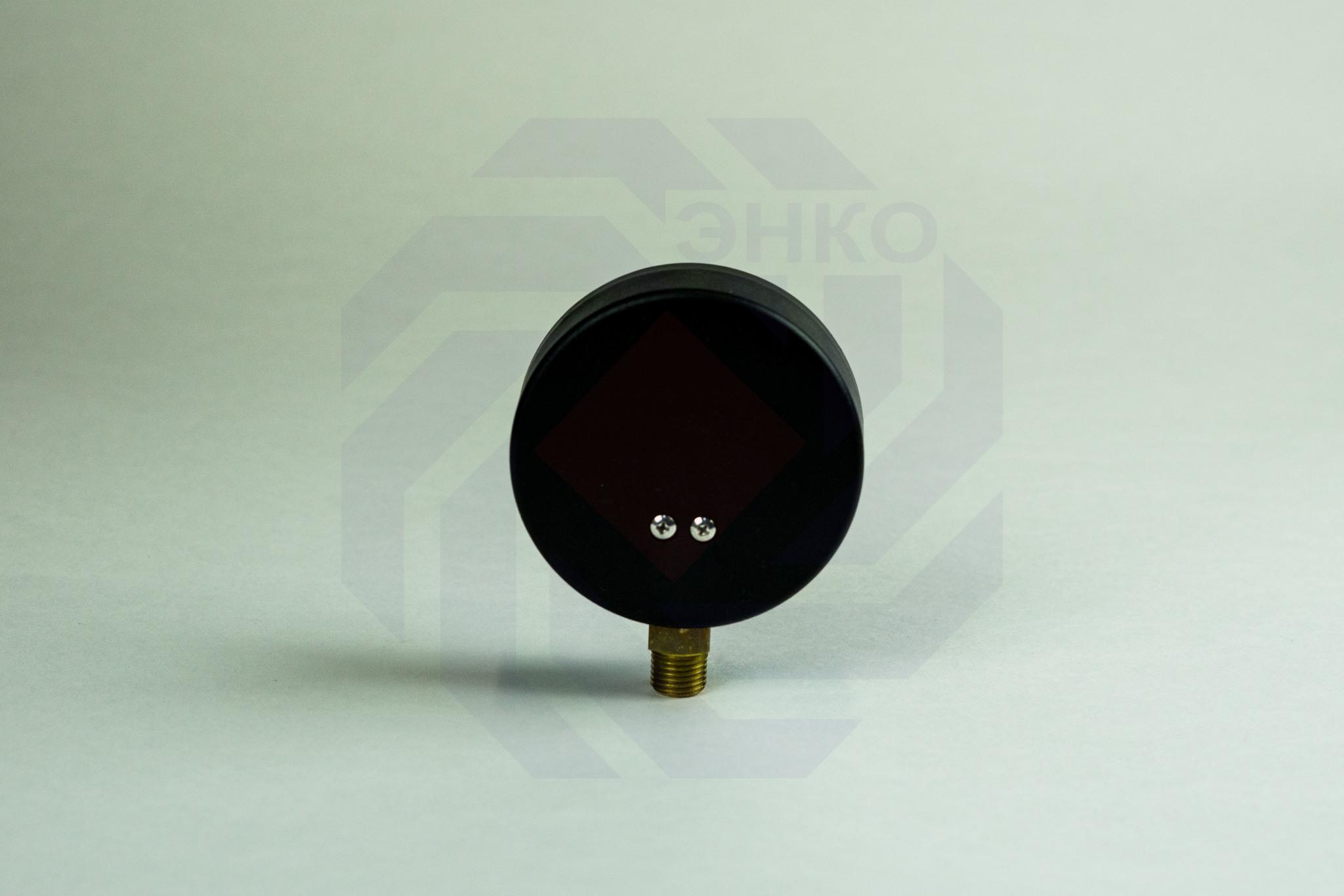Термоманометр радиальный WATTS TMRA (F+R828) 0-120 °С 0-4 бар 80 мм ½
