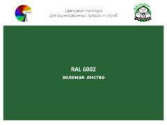 Цвет полимерного покрытия RAL 6002 зеленая листва | АЙГРЯДКИ!