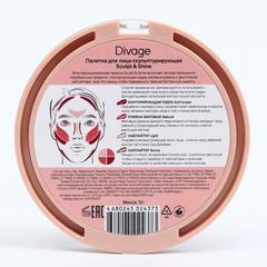 Палетка для лица Divage Sculpt & Shine 4 в 1, cкульптурирующая, 12 г