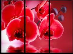 """Модульная картина """"Красные орхидеи"""""""