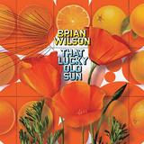 Brian Wilson / That Lucky Old Sun (CD+DVD)
