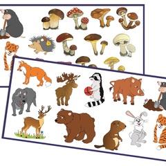 Развивающий набор наклеек: Обитатели леса, грибы