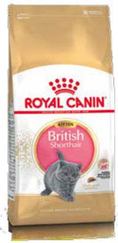 Корм для британских короткошерстных котят