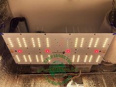 В100хД65хШ40 ГроуБокс 60W LED Quantum FR + IR + UгV