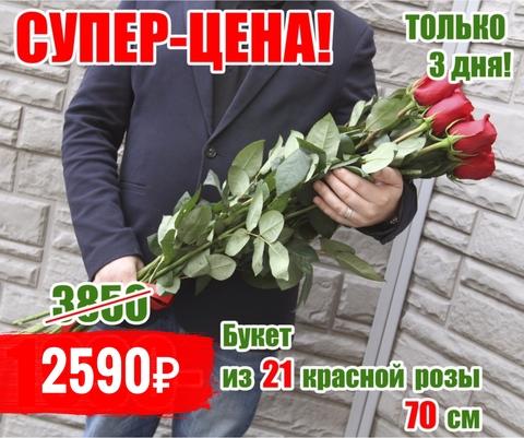 21 красная роза 70 см  #6435