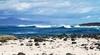 Международный серф-кемп на о. Фуэртевентура
