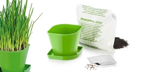 Набор для выращивания пряных растений Tescoma SENSE, зеленый лук