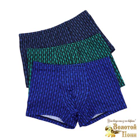 Трусы подростковые хлопок/бамбук (8-14) 200212-М9228