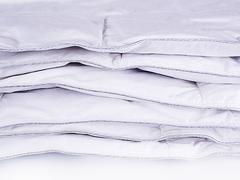 Одеяло кассетное всесезонное 200х220 Серебряная Мечта