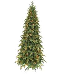 Triumph tree ель Шервуд Премиум стройная (лампы) 2,15 м