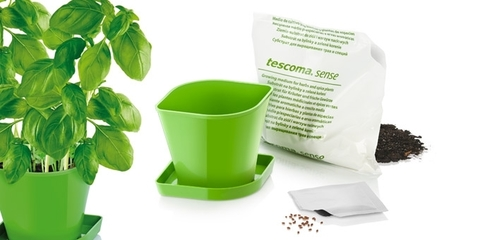 Набор для выращивания пряных растений Tescoma SENSE, базилик