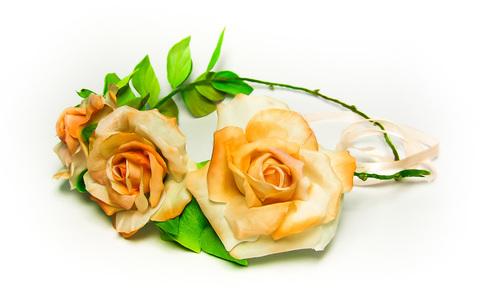 Ободок Троянда