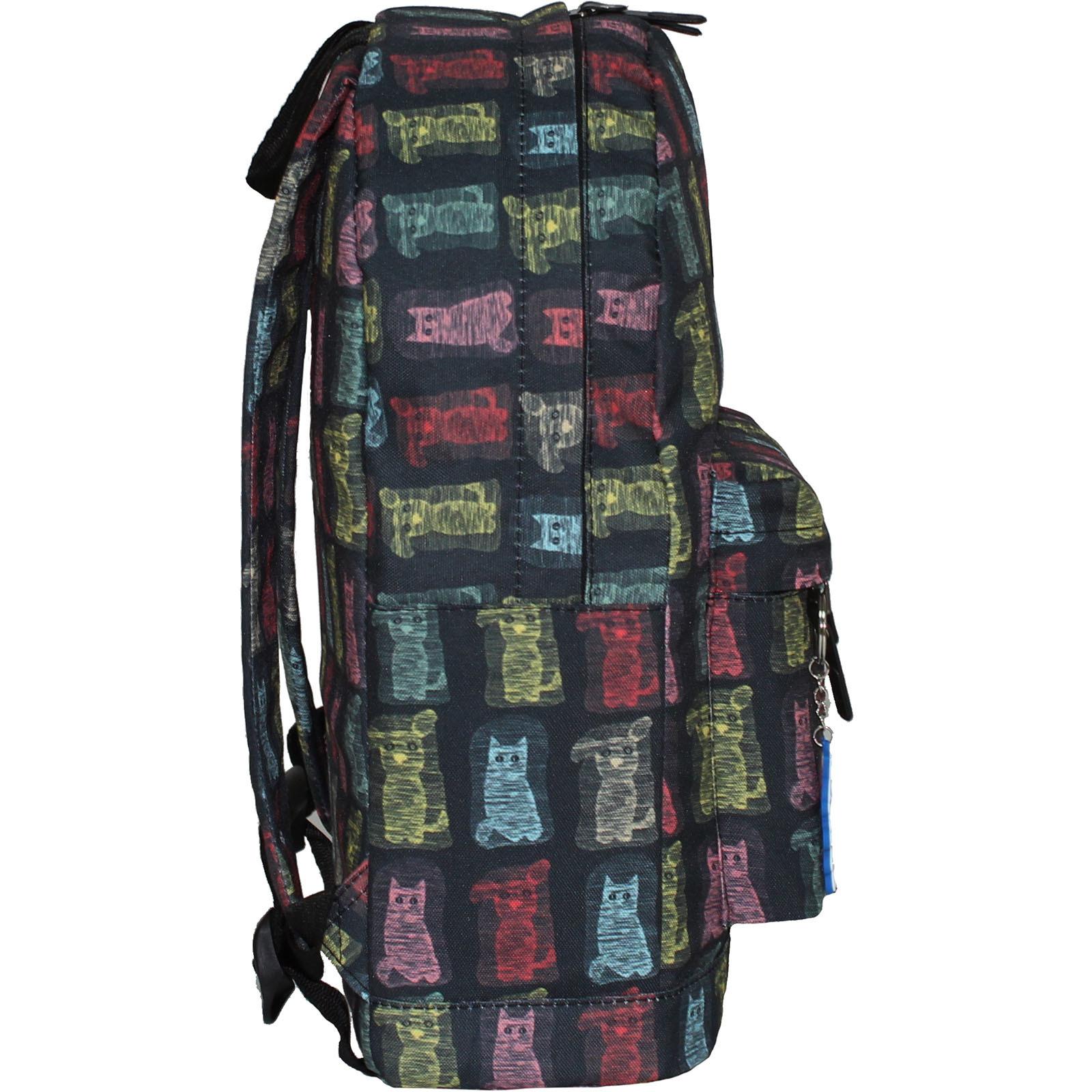 Рюкзак Bagland Молодежный (дизайн) 17 л. сублимация 189 (00533664)