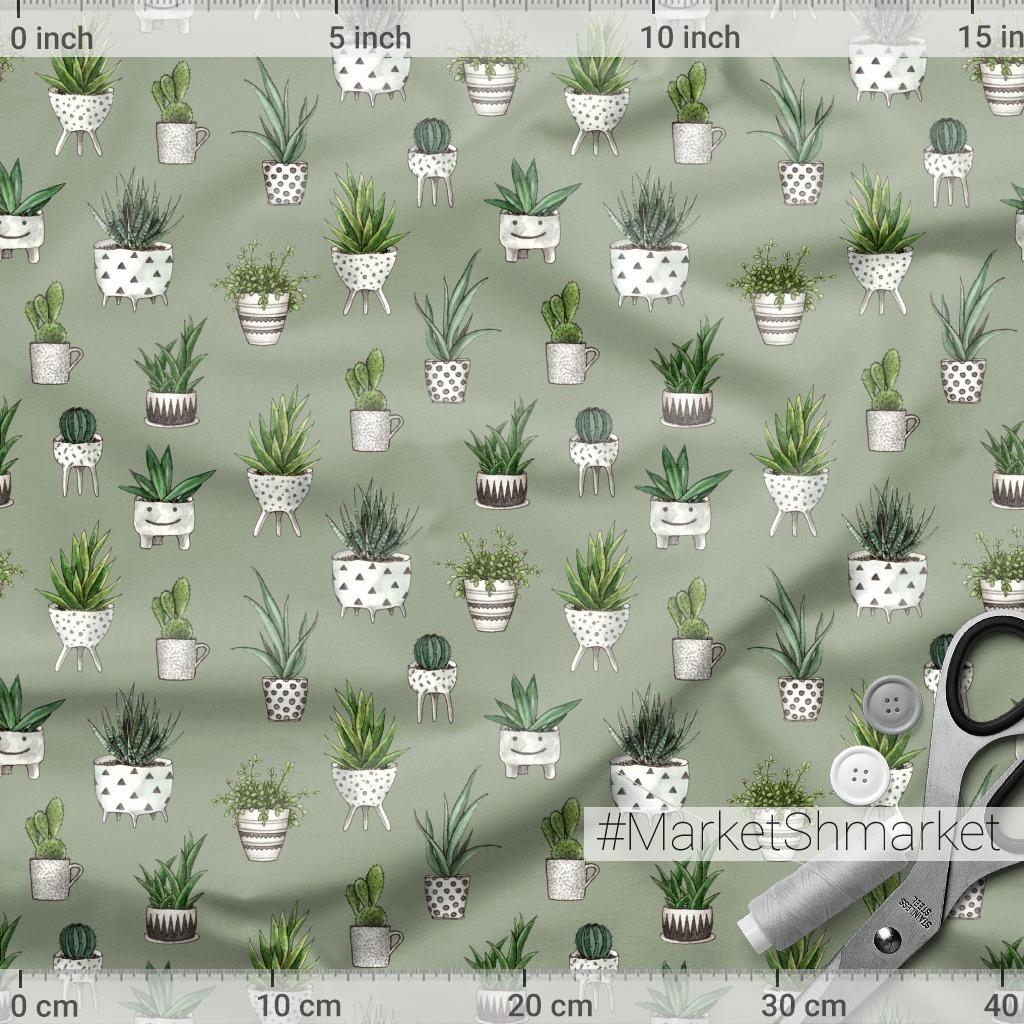 Cute house plants on a khaki backdrop. Домашние растения на фоне цвета хаки