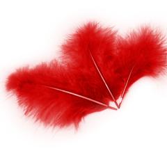 Перья Красные, 10-15 см 30 шт.